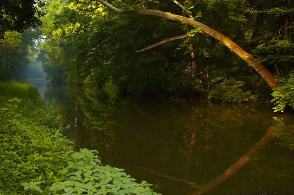 Delaware Canal at Wy-Hit-Tuk Park, Northampton County