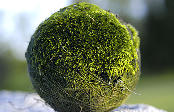 Ancient Tennis Ball